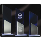 Brandable Acrylic Award Trophy