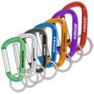 Express Printing Product Carabiner 60mm
