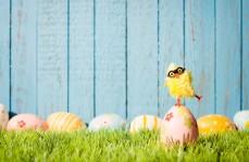 An Aussie Easter